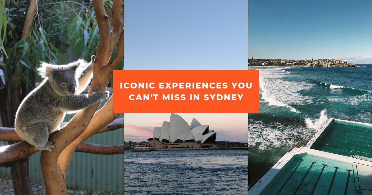KTF Sydney 8