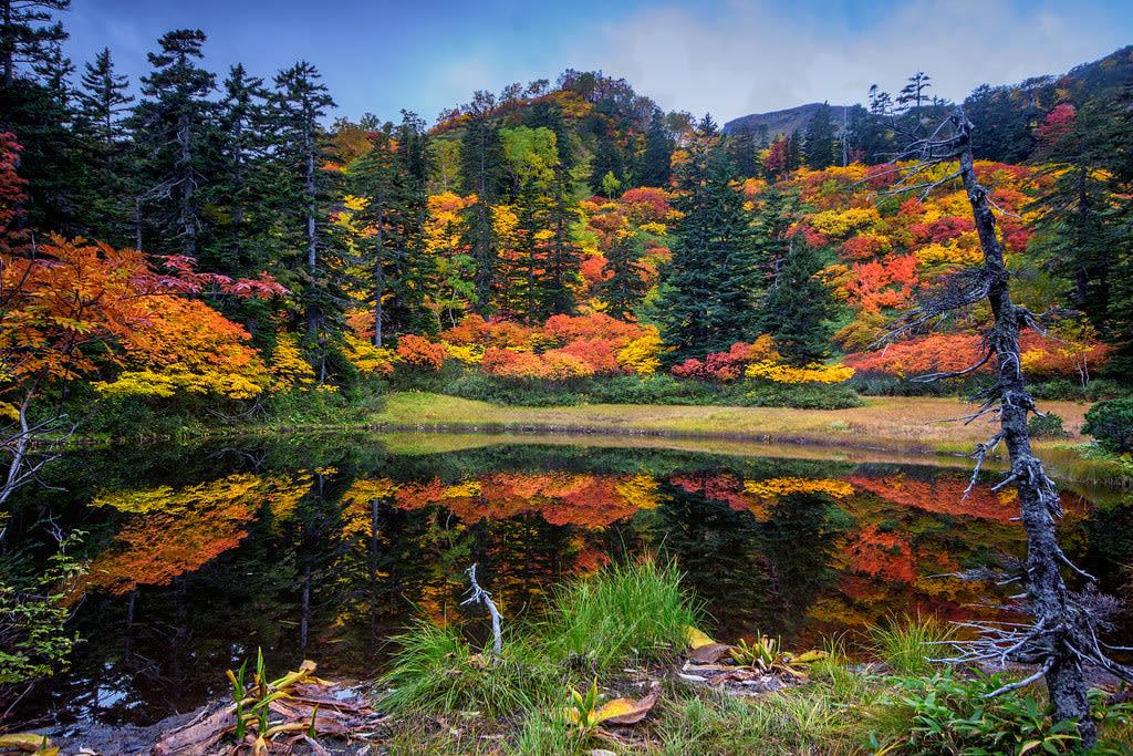 japan-autumn-daisetsuzan-national-park