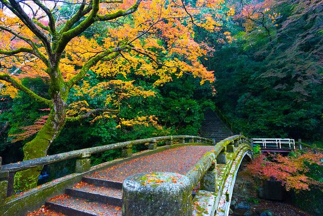 japan-autumn-minoo-park