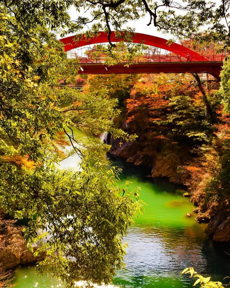 japan-autumn-takatsudokyo-gorge