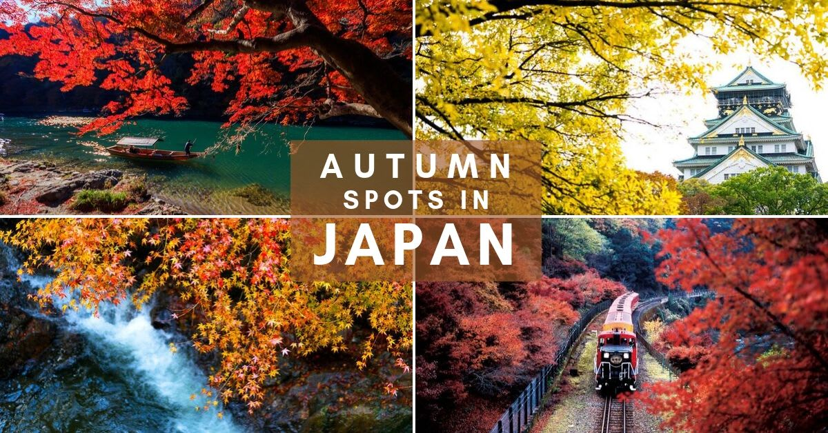 japan-autumn-cover-image