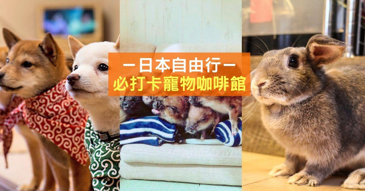 Copy of Blogheader taiwan autumn 3