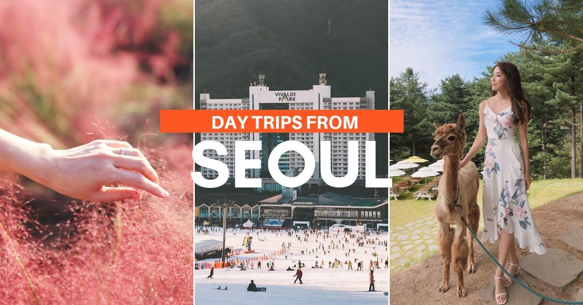 Seoul Day Trips 12