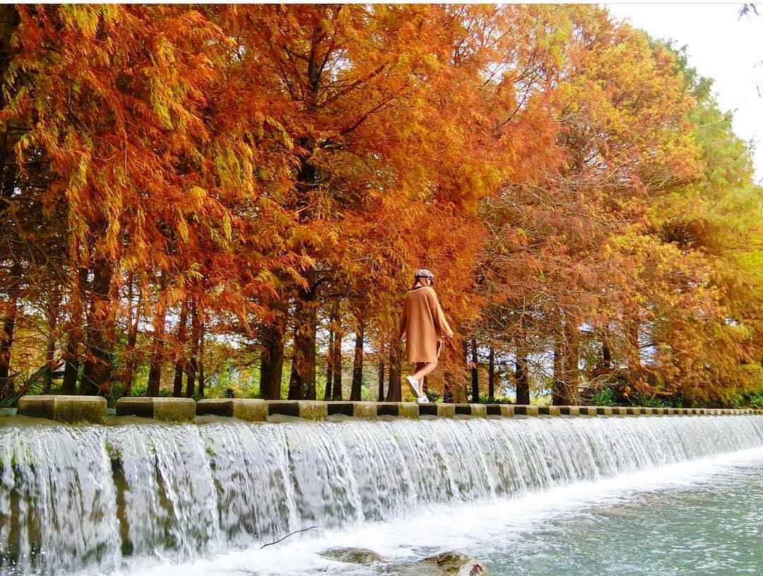 taiwan-autumn-yun-shan
