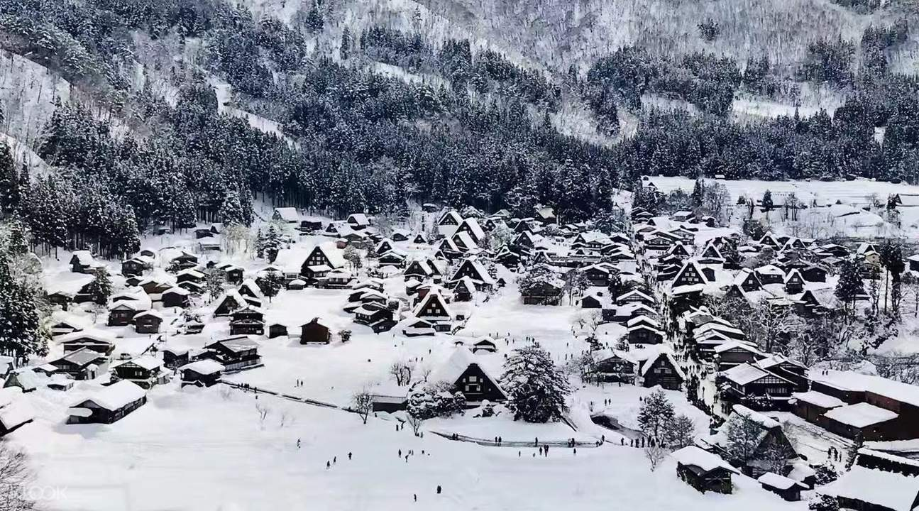 japan-winter-chase-shirakawa-go