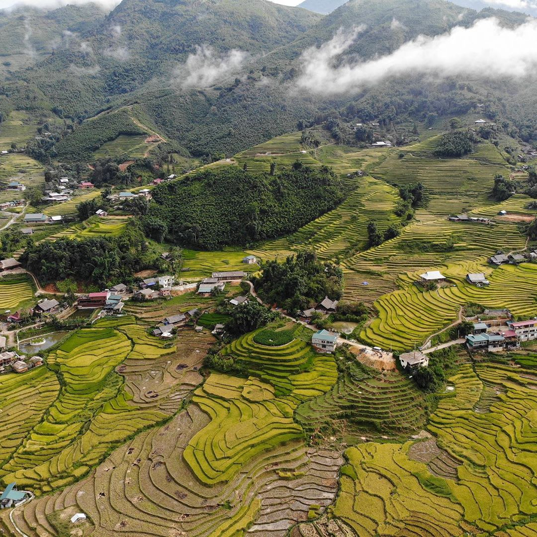 sapa-guide-paddy-fields