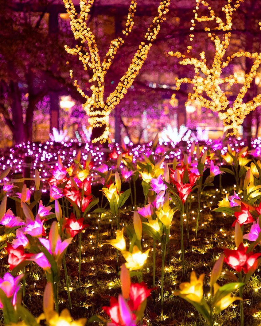 tokyo-illumination-sagamiko