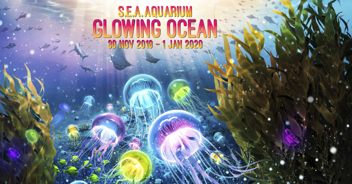 sea aquarium glowing ocean