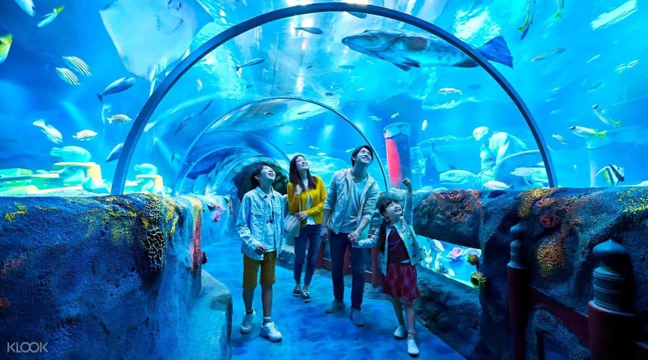 sealife tunnel