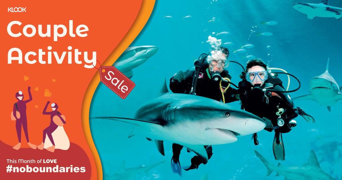 bali-scuba-diving-price