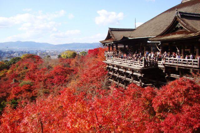 Kyoto Kiyomizudera Temple Autumn