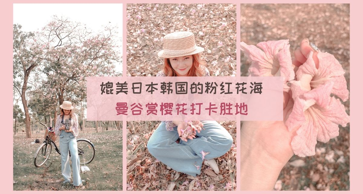 bangkok sakura