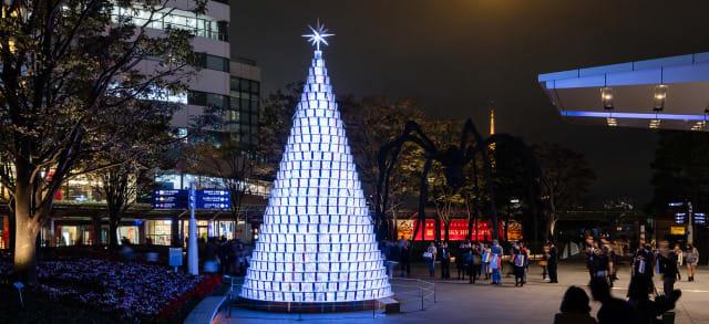 66 plaza tree