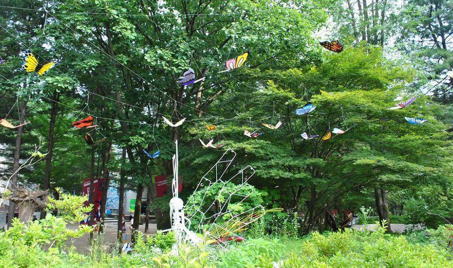 Hampyeong Butterfly Garden