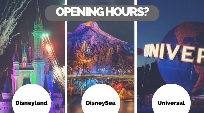 Fireworks Disneyland Tokyo