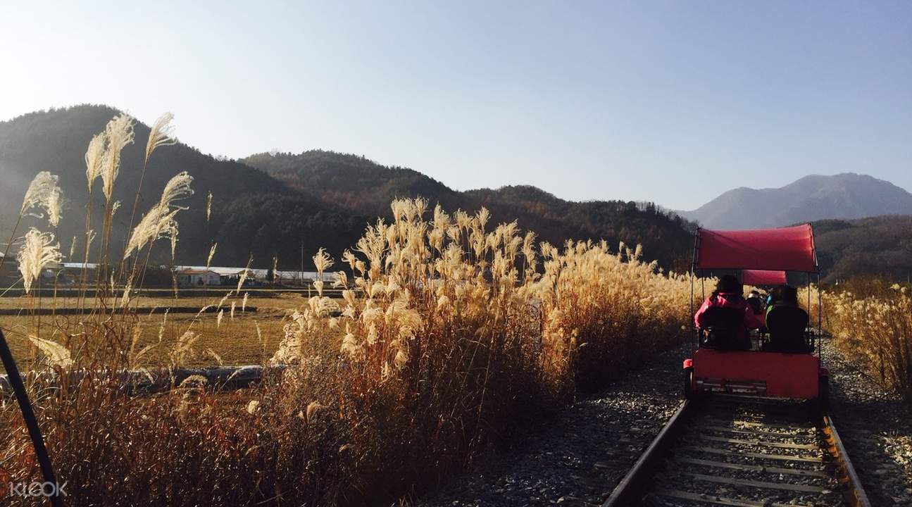 How-To-Make-The-Most-Out-Of-Your-Trip-To-South-Korea-gapyeong-rail-bike
