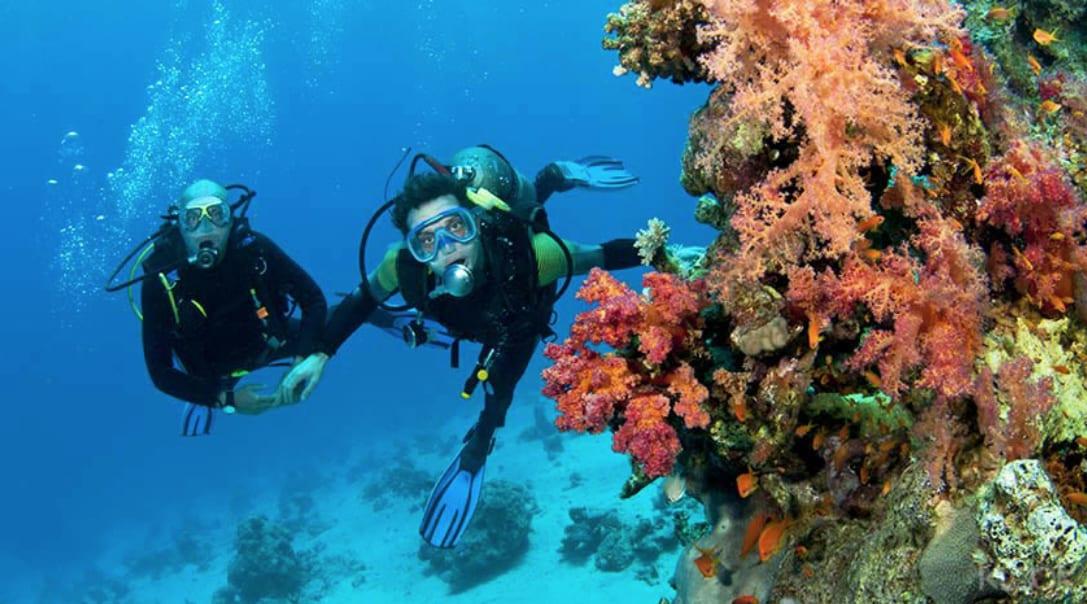 Diving at Raya Island Phuket
