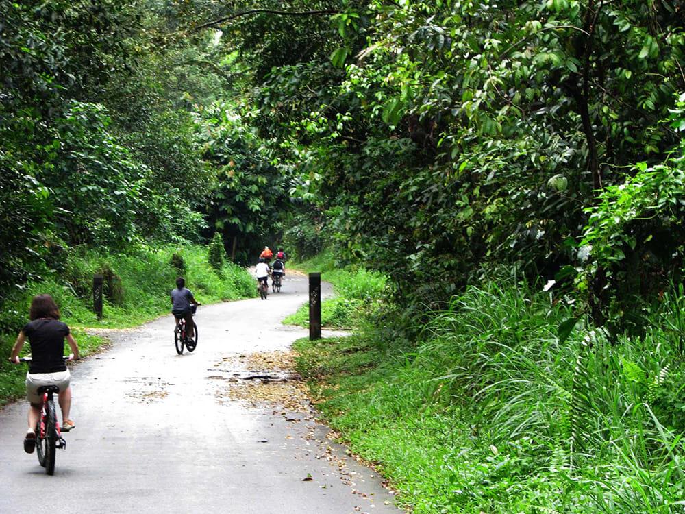 Singapore - Biking