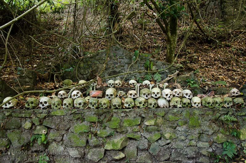 Skulls along the special alter