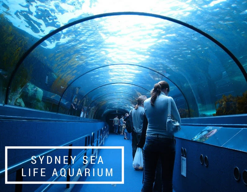A First Timer's Guide to Sydney