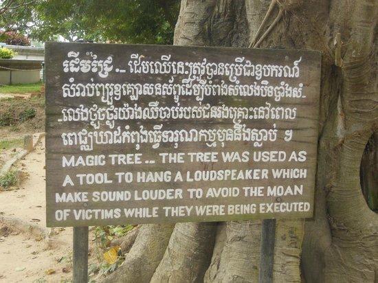 Killing tree at Choeung Ek