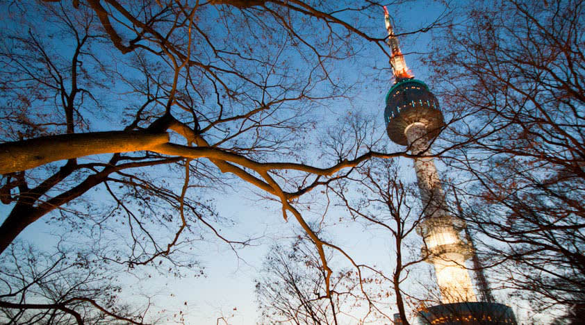 View of Namsan Seoul Tower at night