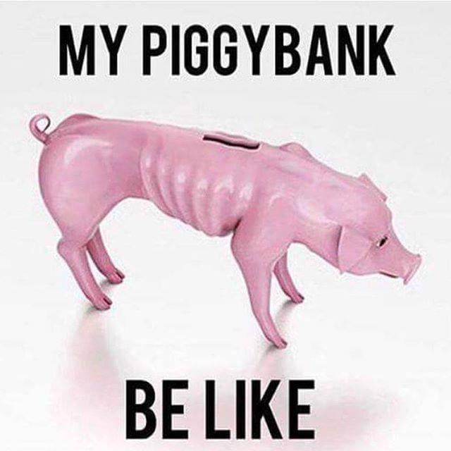 Skinny Piggybank