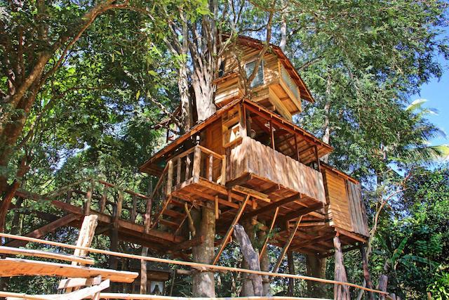 chiangmai-treehouse
