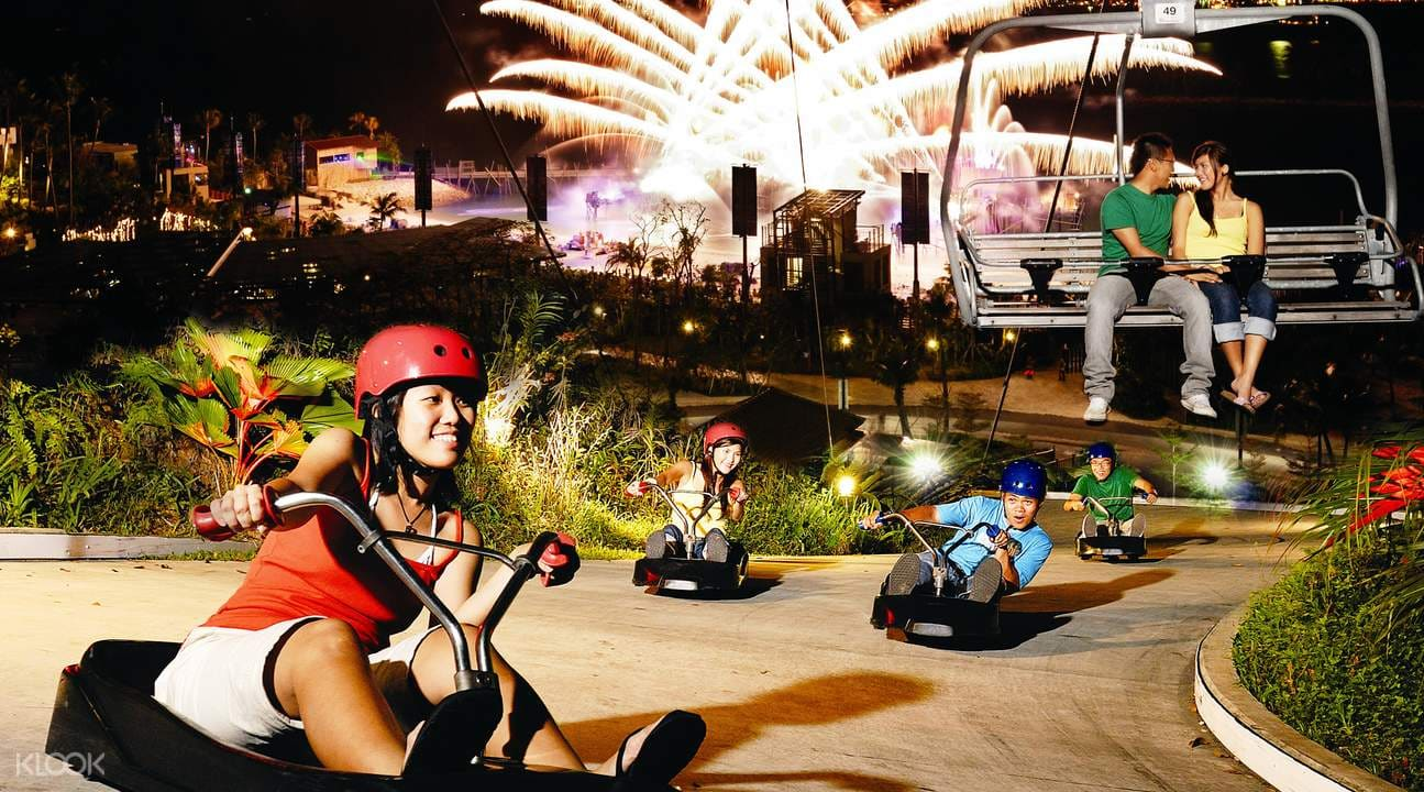 nighttime ride on the skyline luge