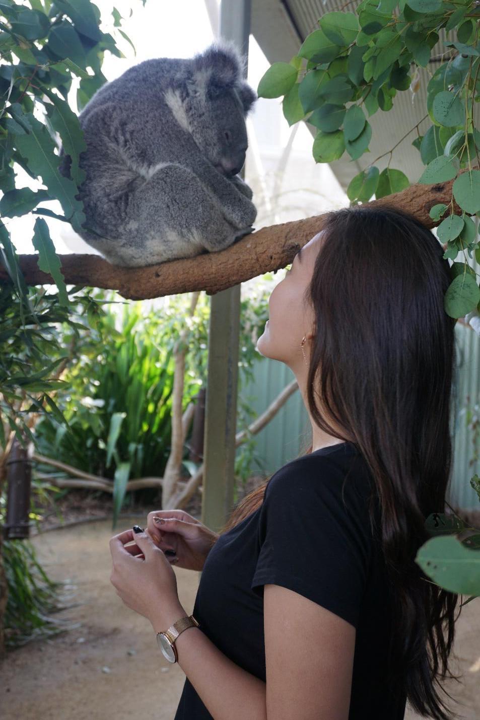 Julia-and-Koala