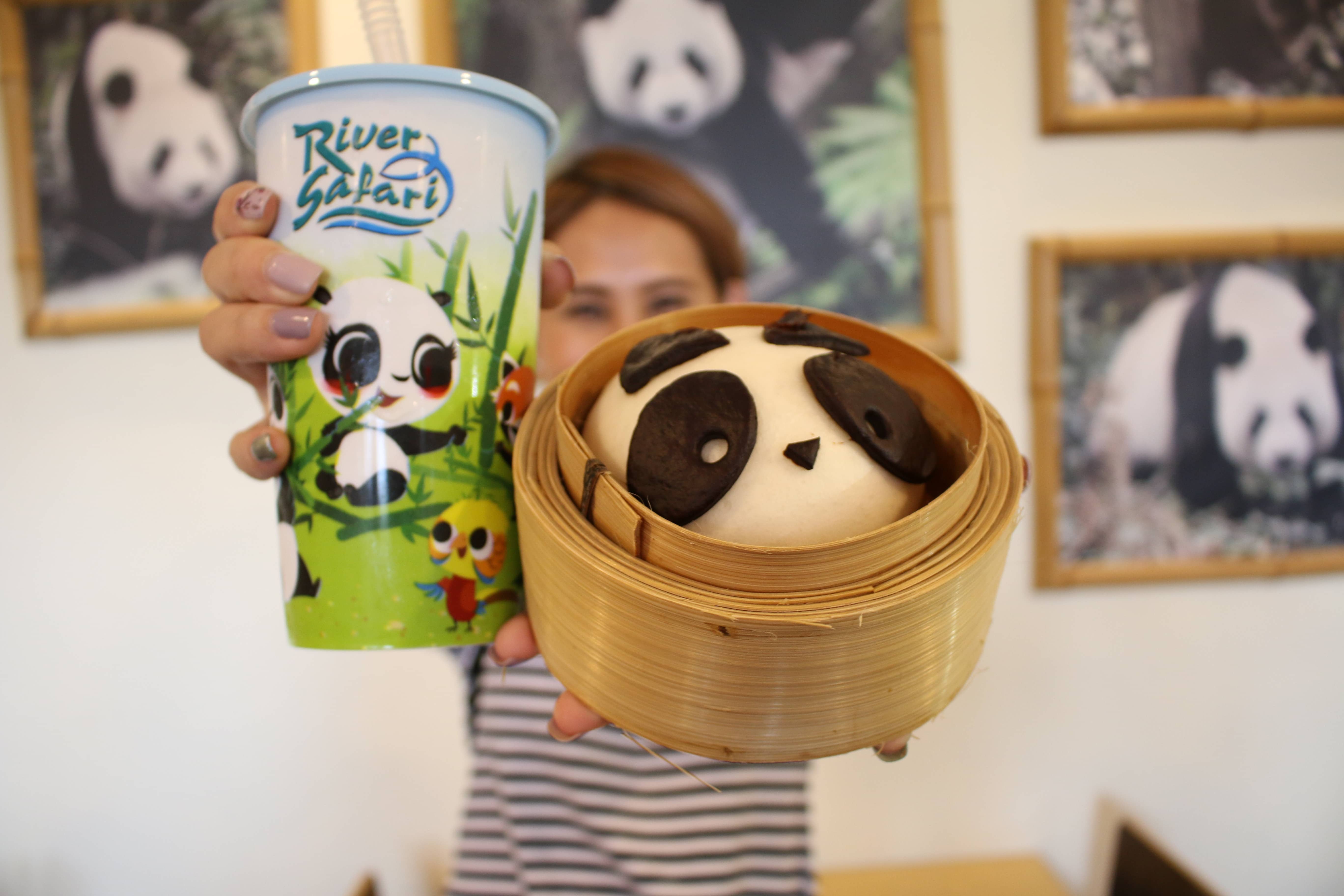 all-you-need-to-know-about-Singapore's-zoological-parks-panda-pau
