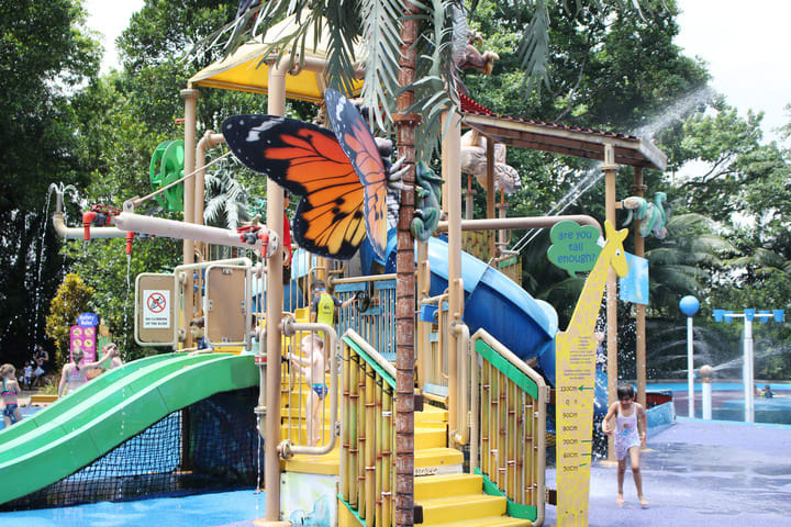 all-you-need-to-know-about-Singapore's-zoological-parks-kidzworld