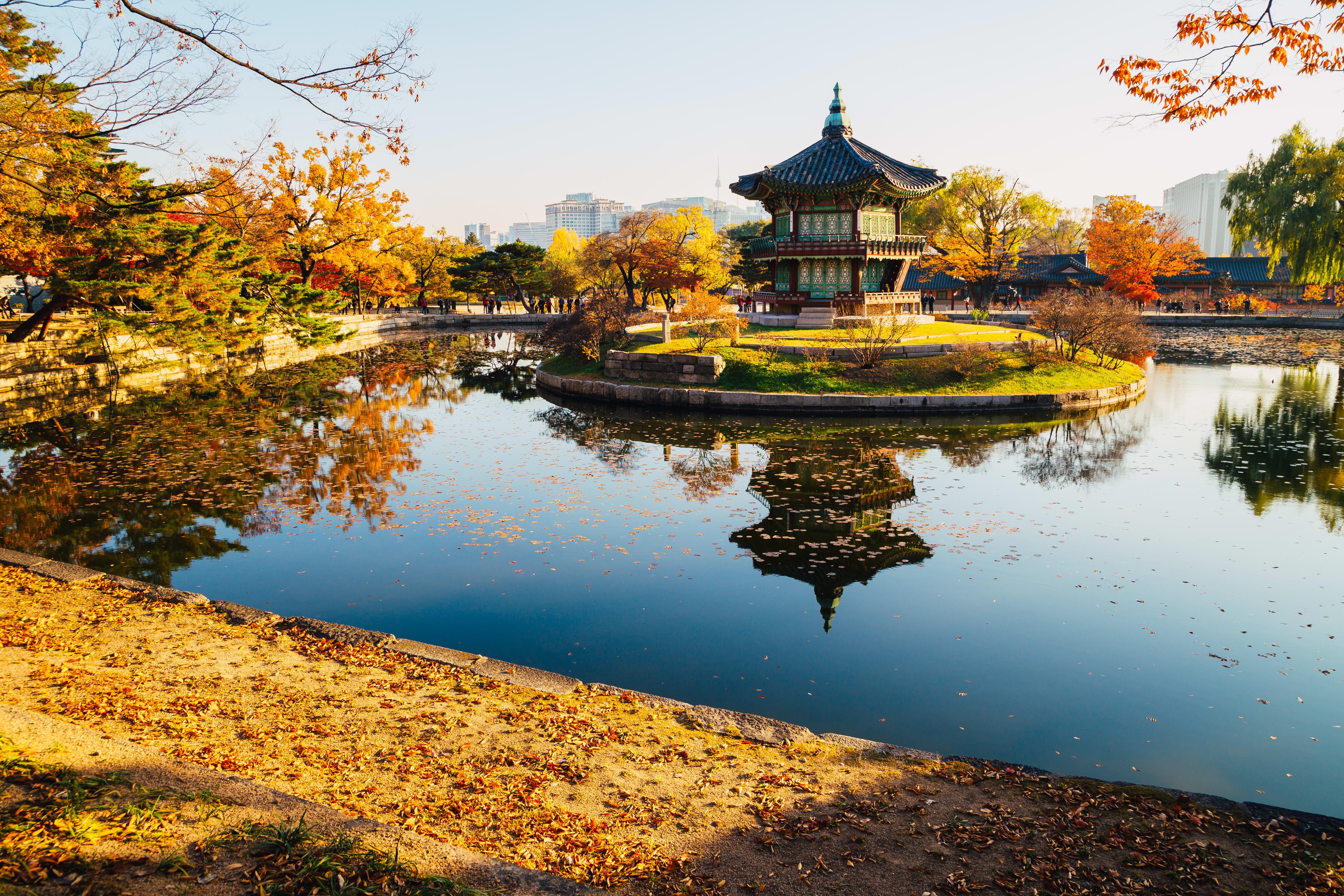 Panduan Menentukan Waktu Terbaik Mengunjungi Korea Selatan