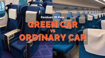 Green Car vs Ordinary Car Cover