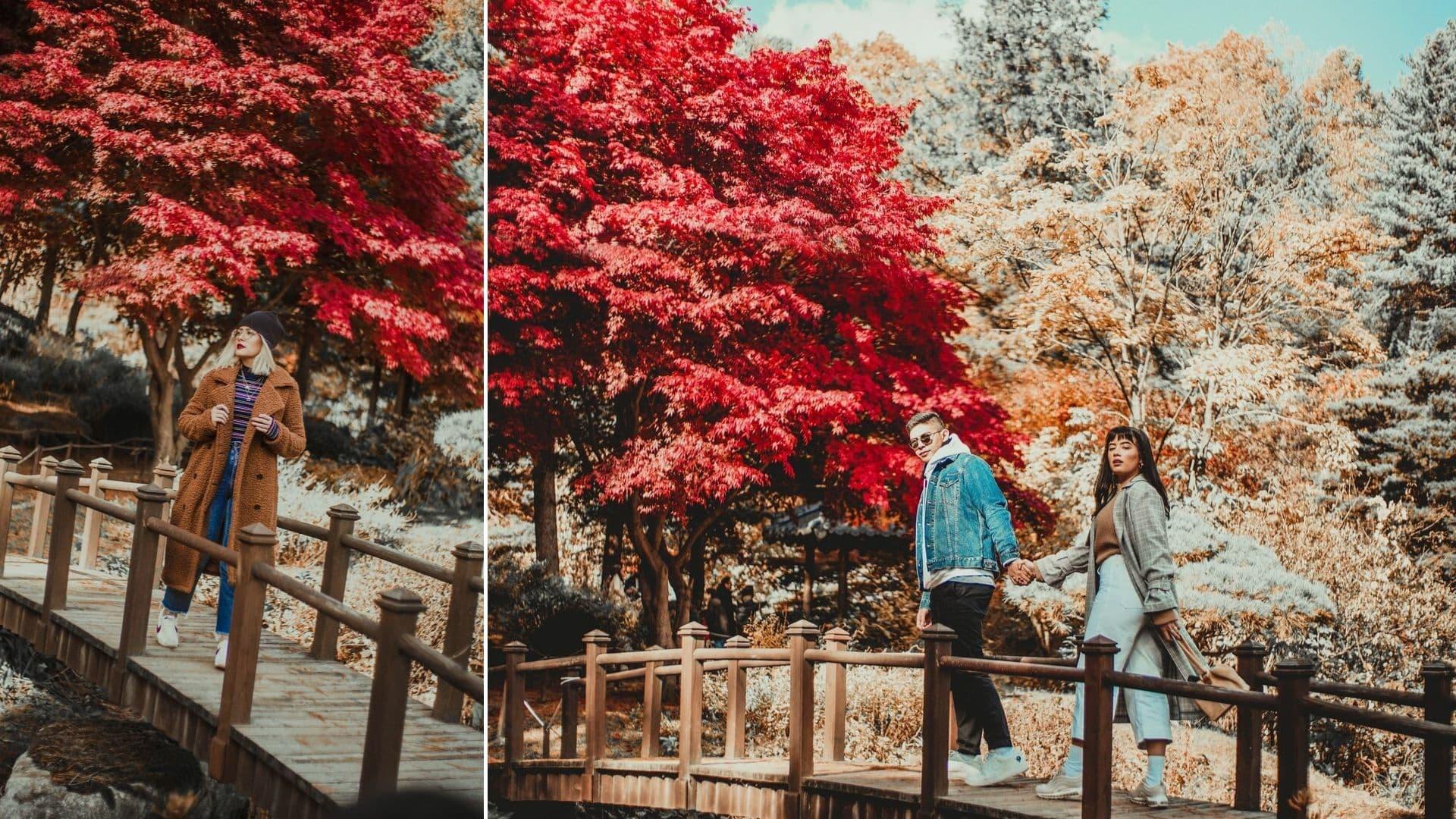 17 Foto Ini Bakal Bikin Kamu Ingin Mengunjungi Korea Di