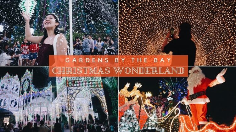 Gardens by the Bay - Christmas Wonderland