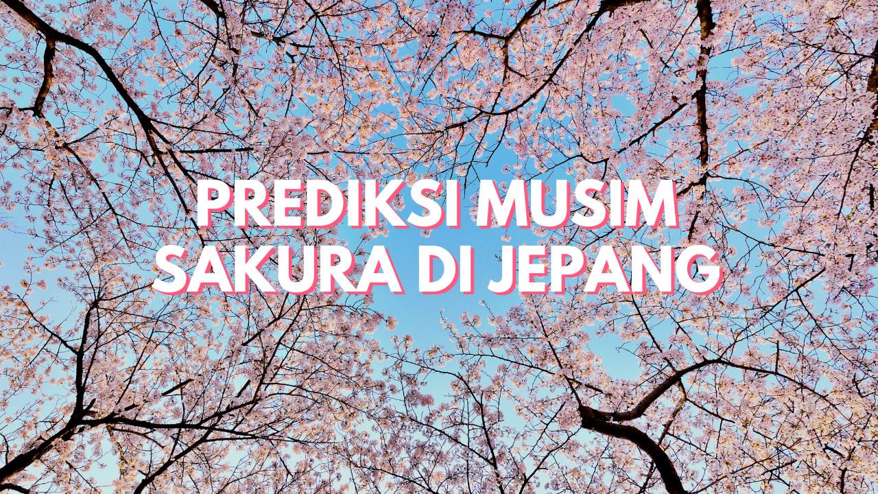 Prediksi Sakura 2020
