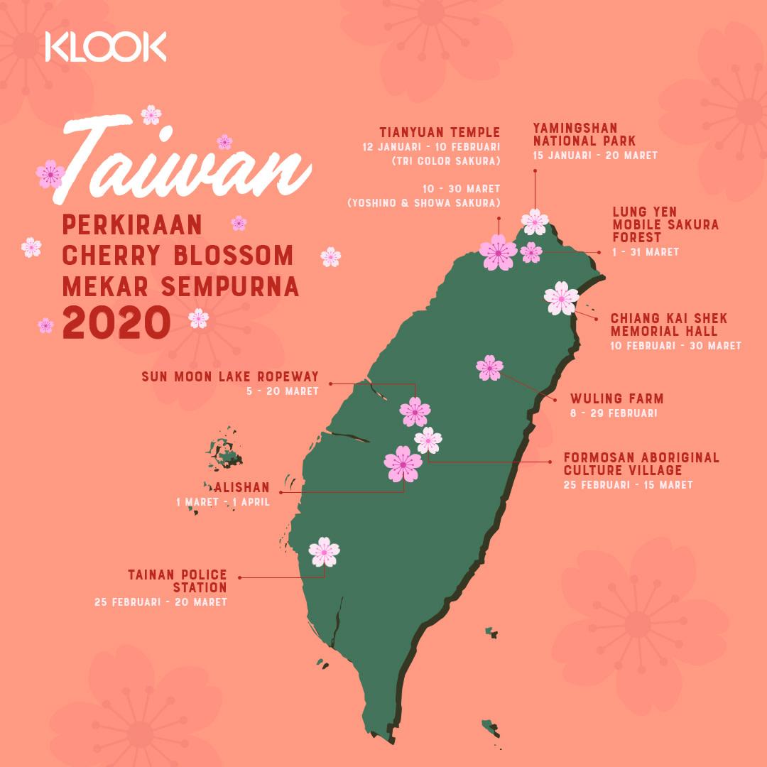 Sakura di Taiwan