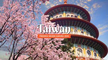 Prediksi Musim Sakura di Taiwan