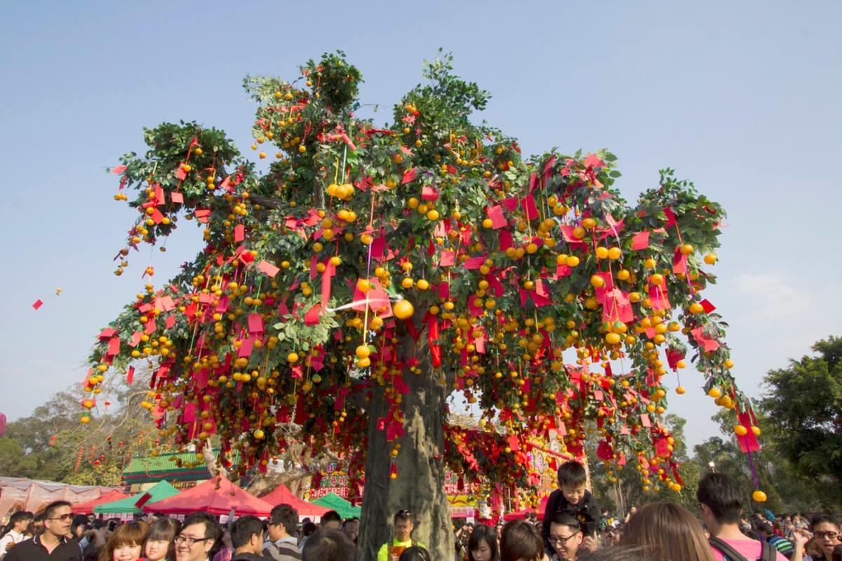 Well wishing tree