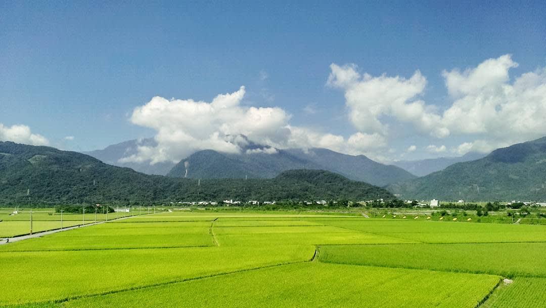 候車月台後方的翠綠稻田美景。(圖片來源/Instagram-prince_ttgsfc)