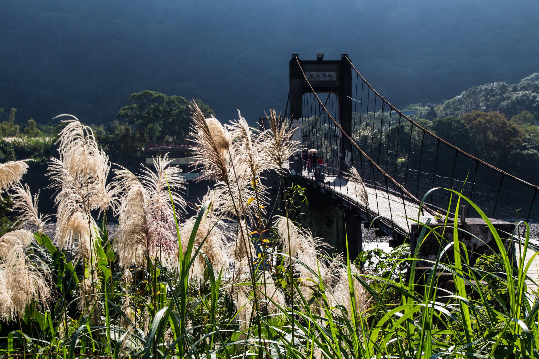 內灣吊橋。(Flickr授權作者-Shenghung Lin)