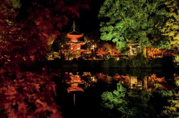 大覺寺紅綠相間的水面。來源:https://goo.gl/1HpDxX