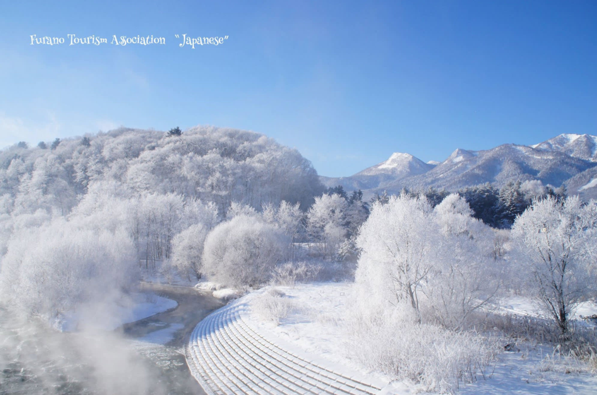北 海 道 純 白 雪 景