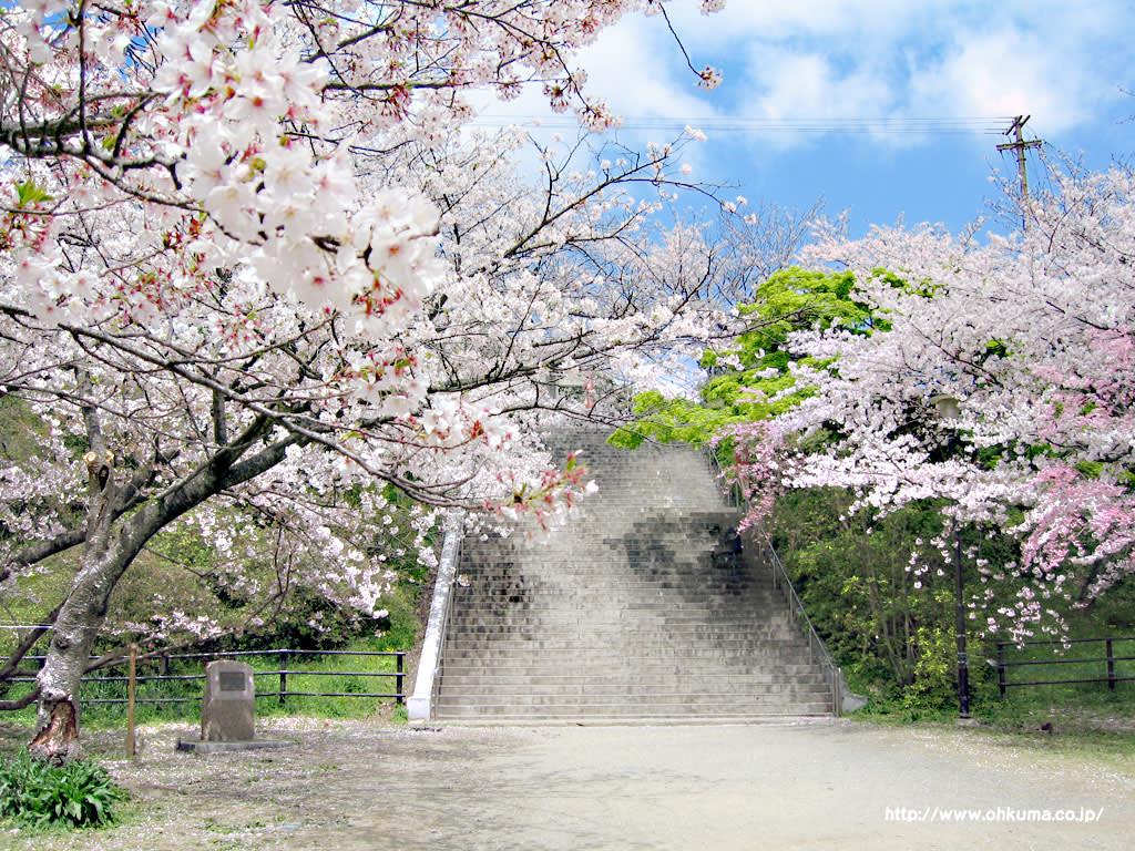 Photo: Ohkuma