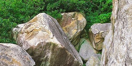 張 保 仔 在 香 港 離 島 藏 了 相 當 多 的 寶 物 , 如 今 都 已 經 人 事 境 遷