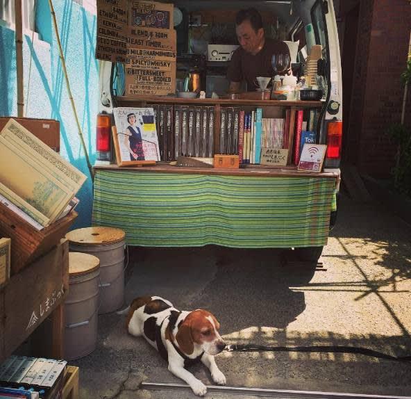 可 愛 的 店 狗 。