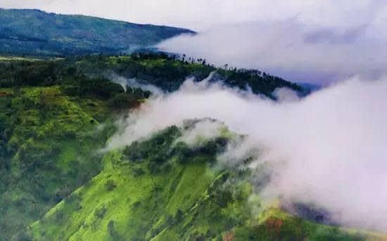 雲 霧 繚 繞 的 梅 加 拉 亞 邦 。