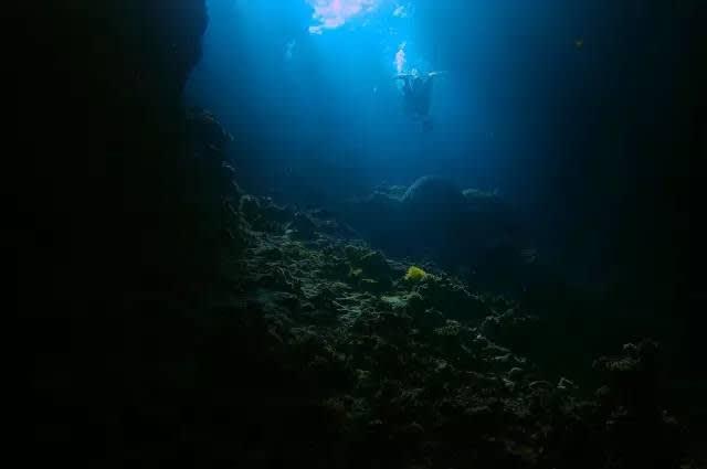 就 用 潛 水 開 啟 這 神 秘 的 海 底 世 界 吧 | flickr@Mercury dog