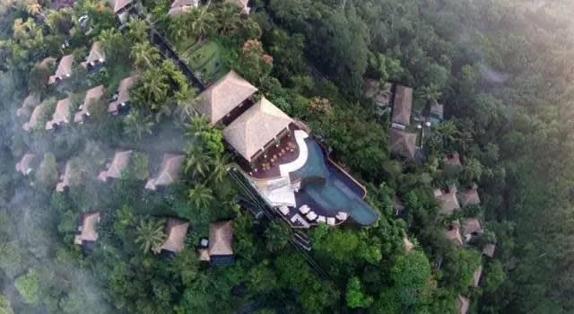 飯 店 座 落 於 熱 帶 雨 林 中 。